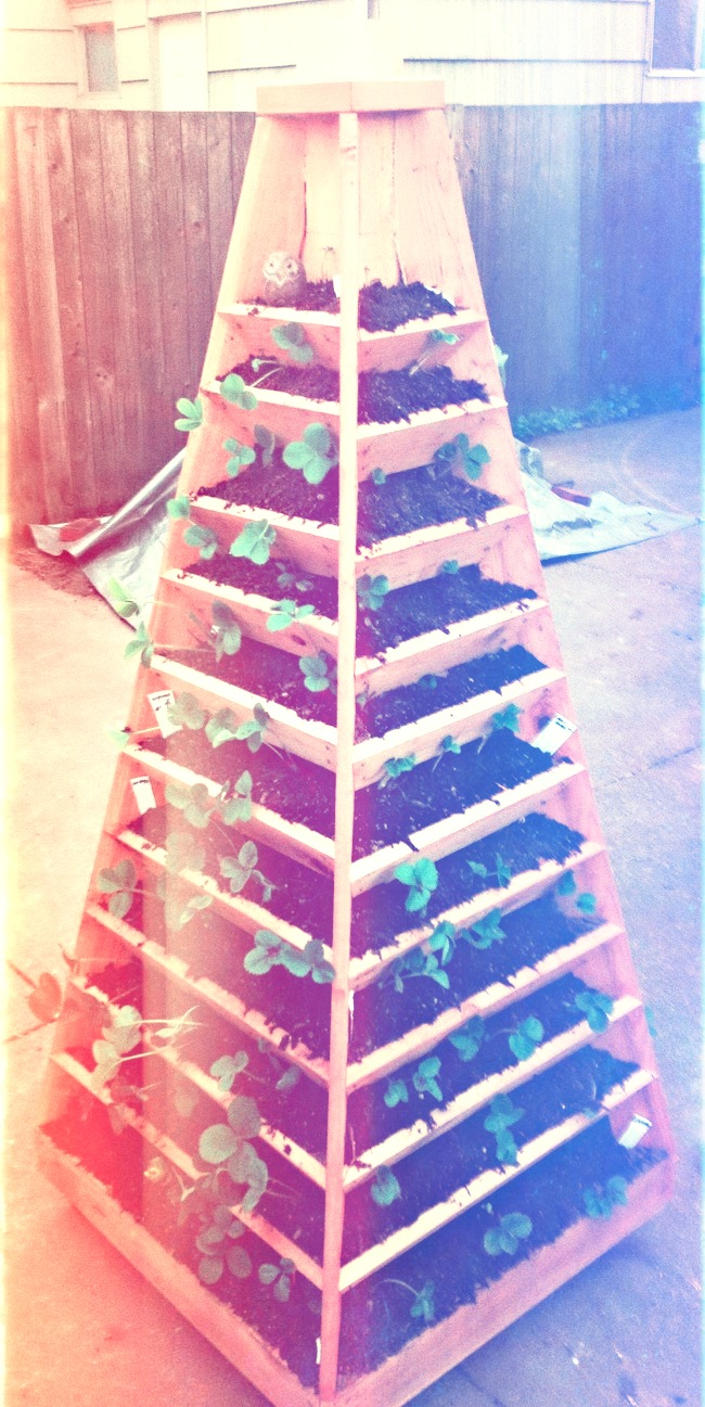 Vertical-Garden-Pyramid-Tower_02